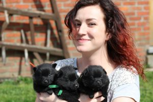 Flory and pups.31.03.2017